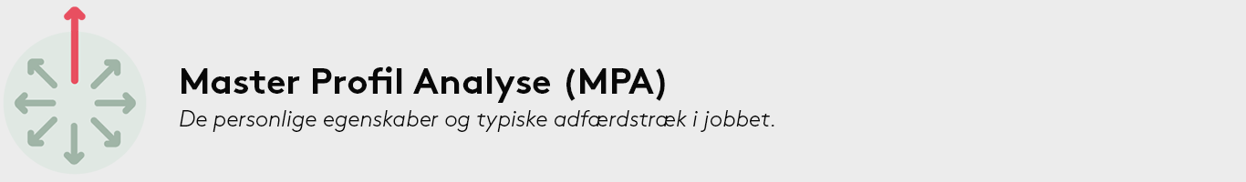 master profil analyse MPA test assessment